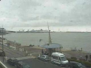 live cam webcam dock
